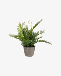 Τεχνητό φυτό Filicopsida