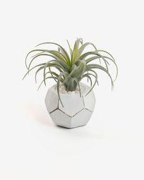 Τεχνητό φυτό Tillandsia